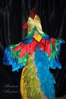фото костюм петушка вид со спины