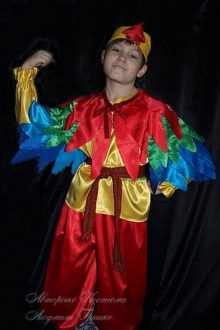 фото авторский костюм петушок детский