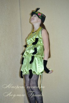 авторский костюм сороконожка фото
