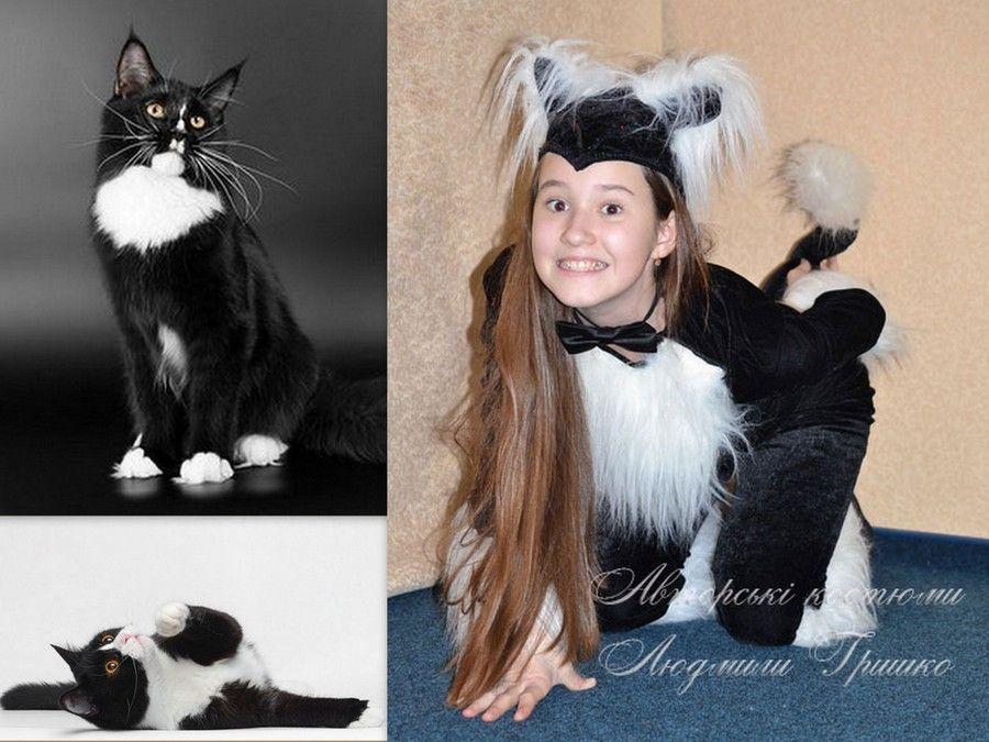 фото коллаж костюм черной кошки и фото котов