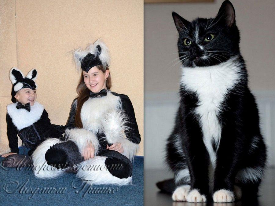 фото коллаж карнавальный костюм кошки и котенка