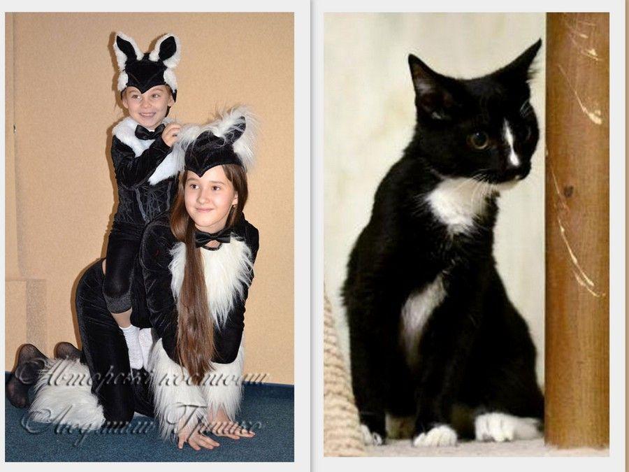 фото коллаж кот и авторские костюмы кошки и котенка