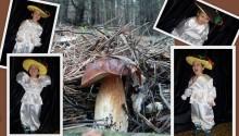 фото коллаж костюм гриба боровика для мальчика