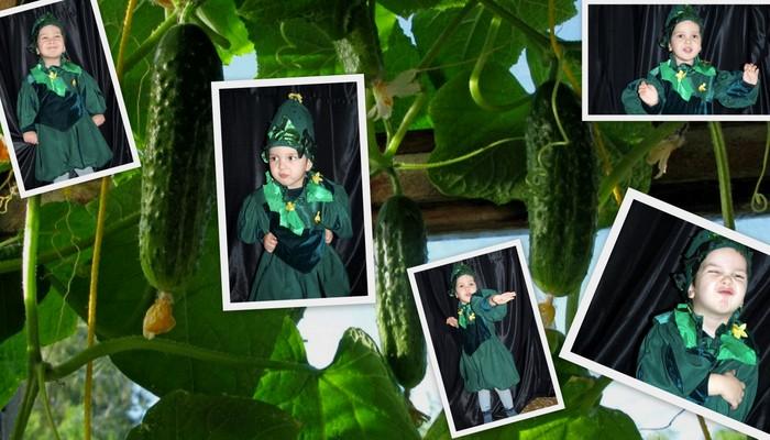 костюм огурчика для мальчика фото коллаж-2