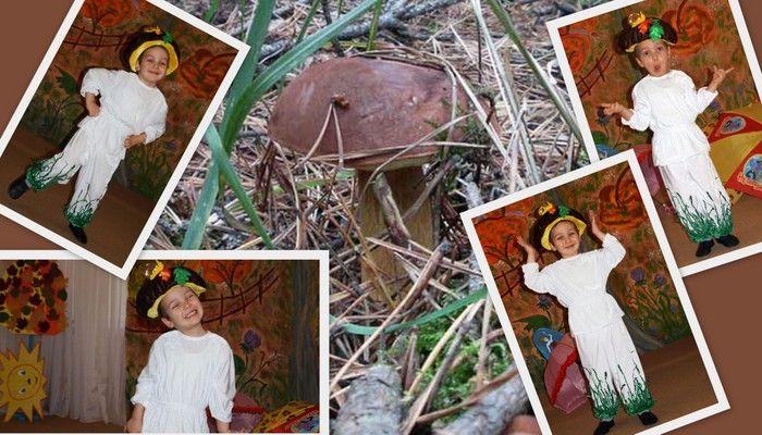 авторский карнавальный костюм грибочка фото коллаж костюма и боровика