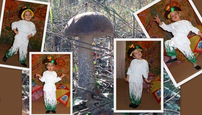 костюм грибочка для мальчика фото коллаж гриба и костюма