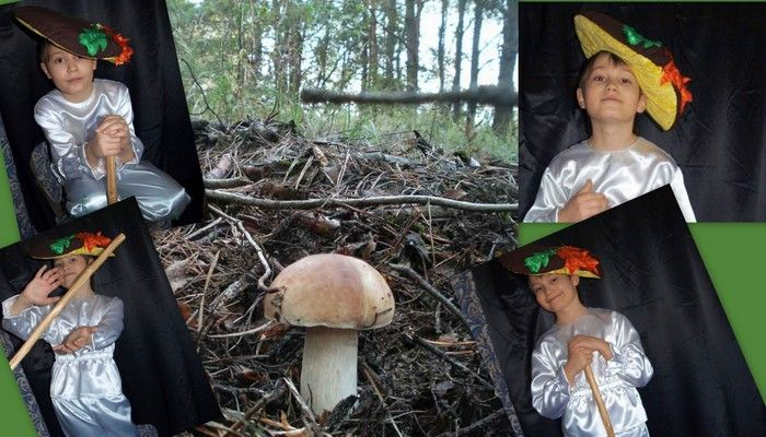 костюм гриба для мальчика фото коллаж на фоне леса