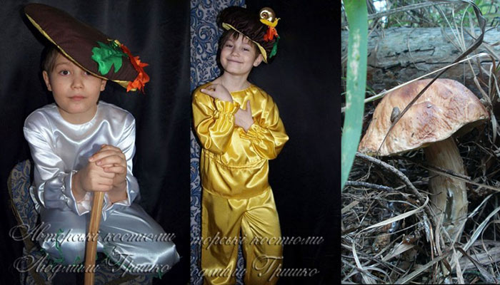 костюм гриба для мальчика фото коллаж на фоне гриба