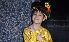 Костюм Гриба  и другие авторские карнавальные костюмы от дизайнера Людмилы Гришко на Прокат в Киеве (044) 565=89-83
