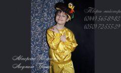 фото карнавальный костюм гриба для мальчика
