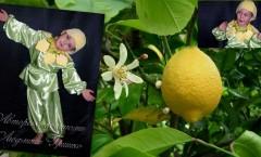 сказка яблоки бессмертия лимон фото коллаж