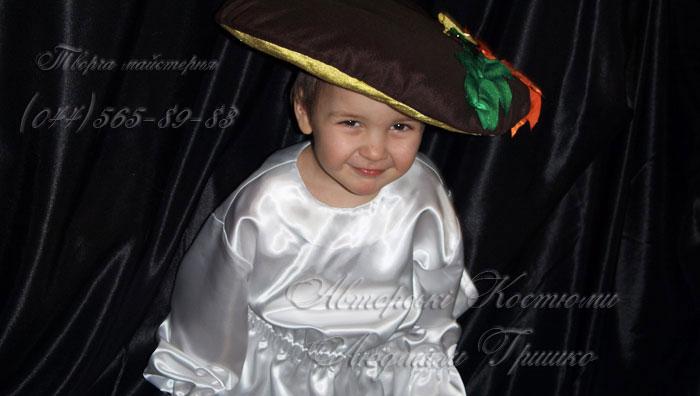 костюм гриба боровика фото
