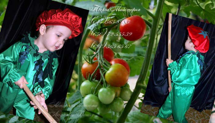 Kostyum_Pomidora_44