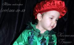 фото костюм помидора для мальчика на праздник осени