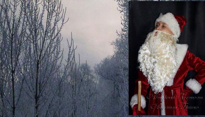 карнавальный костюм грудня фото на фоне зимнего пейзажа
