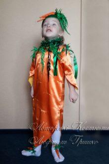 фото костюм морковки на праздник осени