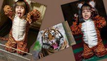 фото коллаж авторского костюма тигренка ручной работы