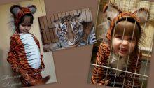 фото коллаж детского авторского костюм тигренка