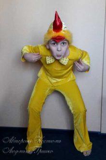 авторский костюм цыпленка фото