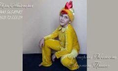 костюм цыпленка фото карнавального наряда