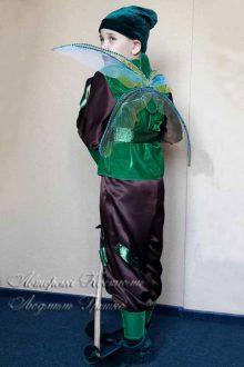 костюм эльфа для мальчика фото с крыльями стрекозы вид сзади