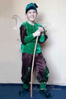 костюм эльфа для мальчика фото с крыльями мотылька