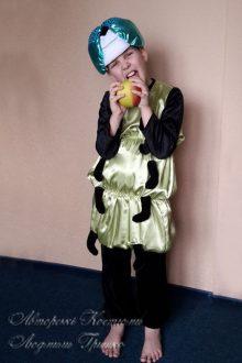 костюм гусеницы для мальчика на праздник осени фото