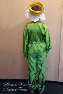 костюм нарцисса для мальчика фото вид со спины