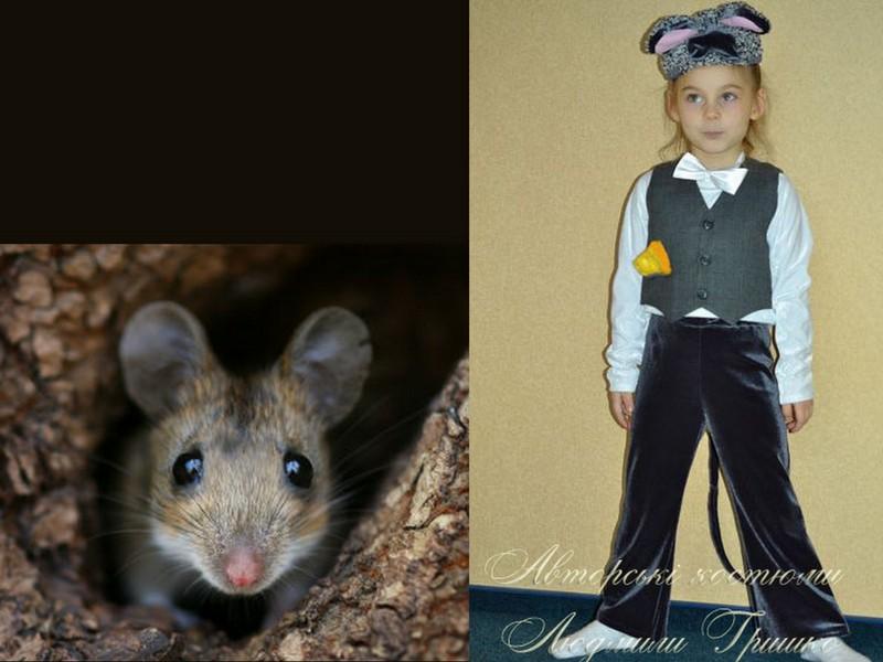 костюм мышонка. фото карнавального детского костюма